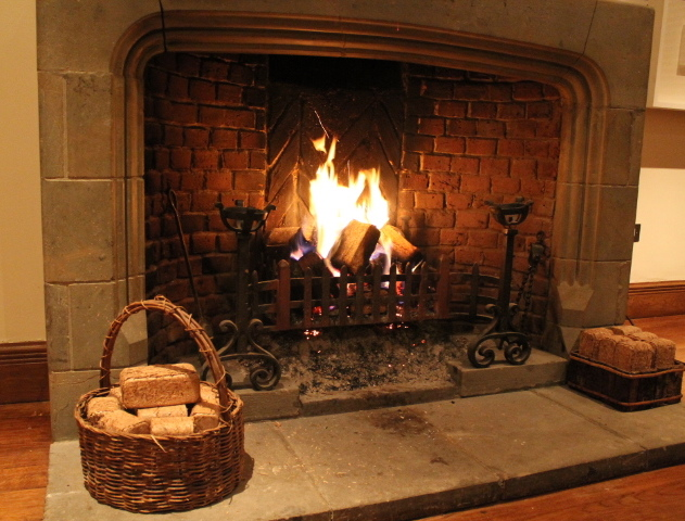 Briquettes For Wood Stove ~ Wood briquettes in bio fuel