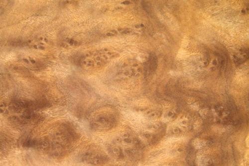 Camphor Burl Veneer Wood Veneers Camphor Burr Veneer