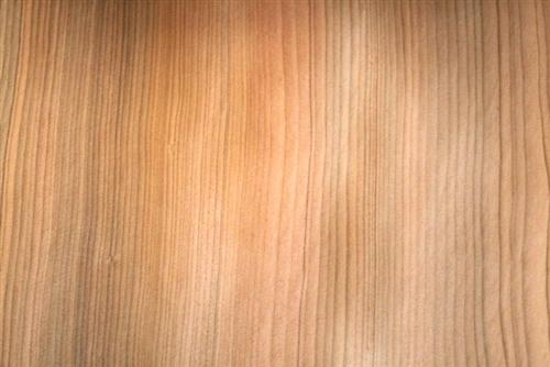 Lebanon Cedar Veneer Wood Veneers Cedar Of Lebanon Veneer