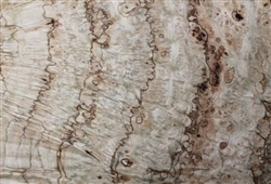 Pepperwood Burl Veneer