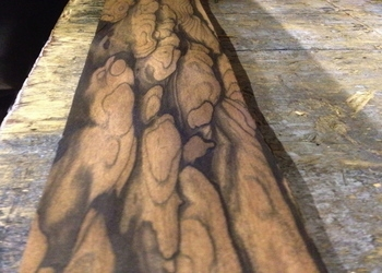 Royal Ebony Veneer