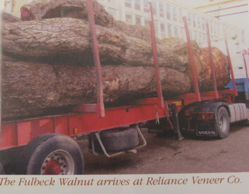 The Fulbeck Walnut